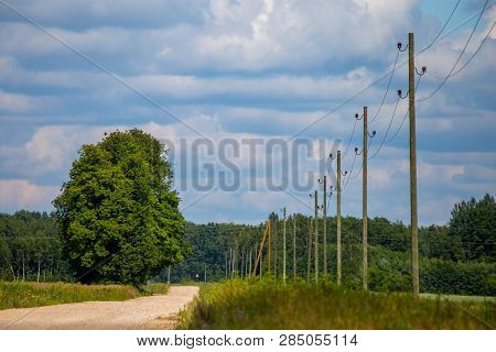 Summer Landscape With Empty Road, Trees And Blue Sky. Electrical Poles Next To The Road. Rural Road,