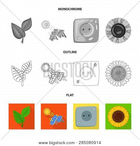 Isolated Object Of Innovation And Technology  Symbol. Set Of Innovation And Nature  Stock Vector Ill