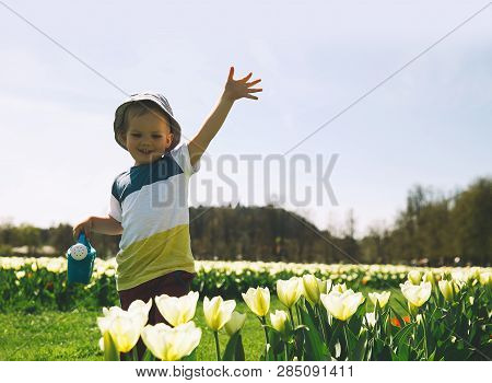Little Boy In Beautiful Garden With Watering Can Among Yellow Tulips Flowers. Child Playing Outdoors