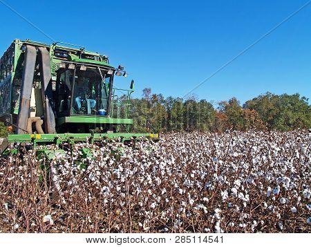 Thomasville, Georgia, Usa - November 26, 2008:  Farmer Picking Cotton With A Cotton Picker.