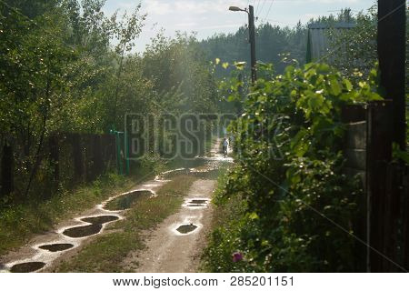 Forest, Agricultural, Country Road With Many Puddles, Going Through The Cottages, Farm Houses, Priva