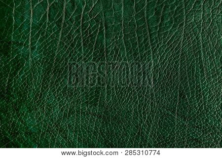 Green creased leather textured background poster