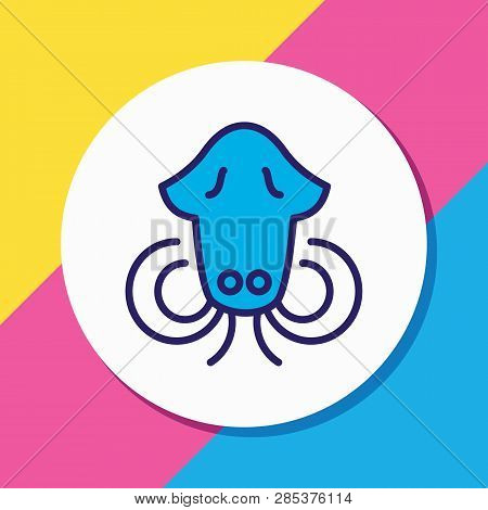 Vector Illustration Of Cuttlefish Icon Colored Line. Beautiful Naval Element Also Can Be Used As Squ