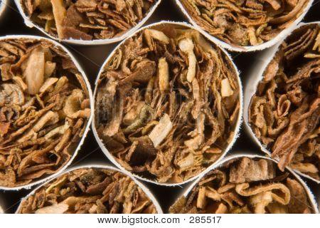 Cigarettes Close-up