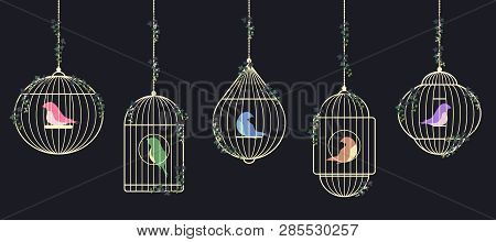 Vector Image Of Colored Birds Of Prisoners In Cages. Gold Birdcages Are Suspended On Chains Braided