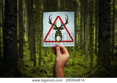 Animal Poaching Restricted As Hand Holding A Paper Sheet With Deer Symbol Over Forest Background. Re