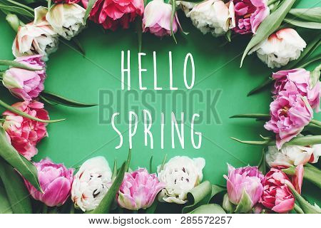 Hello Spring Text Sign On Beautiful Double Peony Tulips Frame Flat Lay On Green Paper. Springtime. S