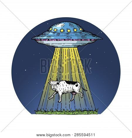 Ufo Kidnaps The Cow Color Sketch Engraving Vector Illustration. Scratch Board Style Imitation. Hand
