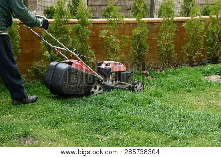 A Man With A Lawnmower Mows Green Grass On A Brown Fence Lawn