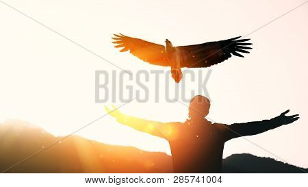 Man Raise Hand Up On Top Of Mountain And Sunset Sky With Eagle Bird Fly Abstract Background. Copy Sp