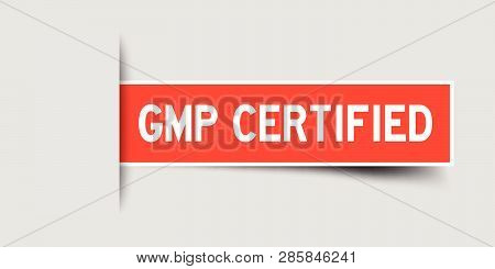 Label square red sticker in word GMP (Good manufacturing practice) certified that insert under gray background (vector) poster