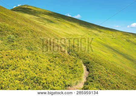 Wonderful Sunny Scenery In Mountains. Grassy Alpine Meadow With Foot Path Winding Uphill. Blue Sky W