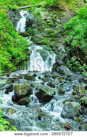 Forest Stream. Mountain Stream Among The Green. Mountain Stream Among The Mossy Stones