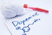 Neurotransmitter Dopamine in brain. Anatomic 3D brain model, lab test tube with blood and note, where is written title of dopamine and formula. Concept for determine level of dopamine in human brain poster