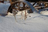 iron old rusty wheel cart stuck in the snow cart poster
