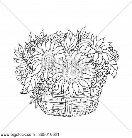 Autumn Composition. Vector Hand Drawn Illustration With Sunflowers, Rowanberries And Leaves Into A B