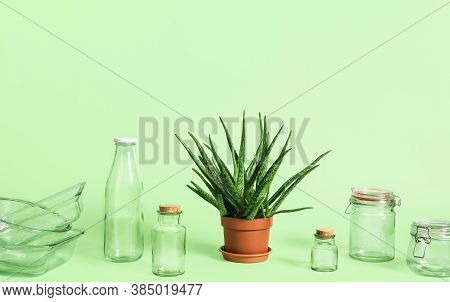 Plastic-free Household Objects And Green Plant Isolated On Green Background. Sustainability Concept.