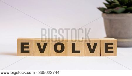 The Word Evolve Is Written On Wooden Cubes Near A Flower On A Light Background