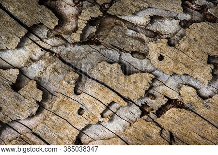 Old Natural Textured Wooden Background, Wooden Surface