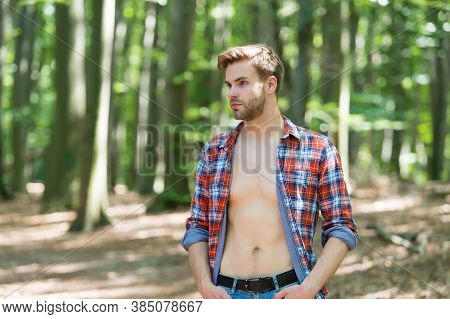 Attractive And Charismatic. Sexy Man Stand In Wood On Natural Landscape. Handsome Guy With Sexy Bare