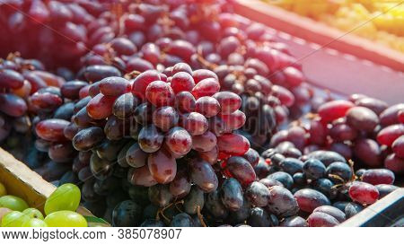 Bunches Of Red Grapes On The Counter Of The Farmers  Market. The Grapes Are Prepared For Sale. Bunch