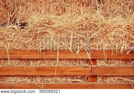 Stock Of Dry Hay. Winter Dry Hay Warehouse For Pets, Livestock, Goats, Sheep