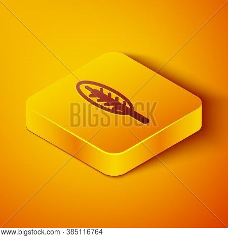 Isometric Line Indian Feather Icon Isolated On Orange Background. Native American Ethnic Symbol Feat