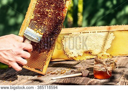 Beekeeper Collects The Honey. Beekeeping Tools Outside. Frame With Bees Wax Structure Full Of Fresh