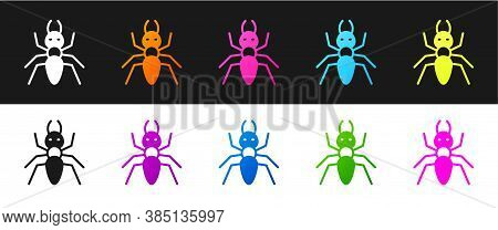 Set Ant Icon Isolated On Black And White Background. Vector