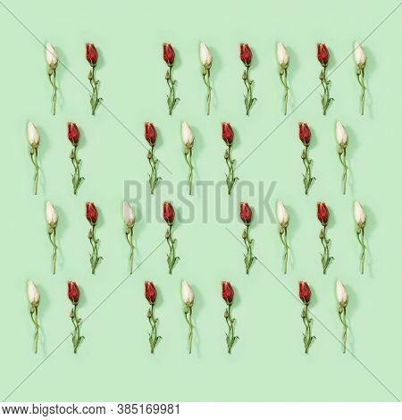Greeting Card Regular Creative Pattern From Natural Dry White And Red Flower Eustoma On Soft Green.