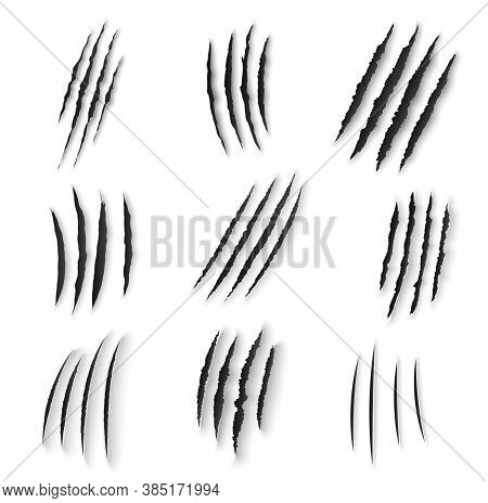 Claws Scratches Isolated Vector Wild Animal Nails Rip, Tiger, Bear Or Cat Paws Sherds On White Backg