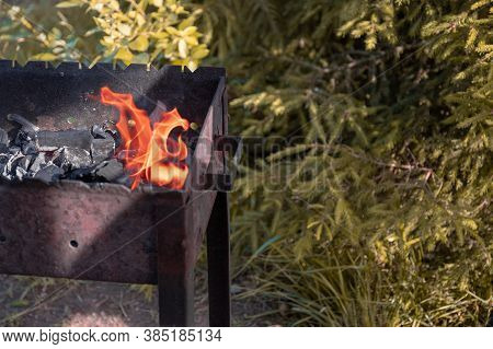 Brazier With Beautifully Burning Firewood. Summer Picnic
