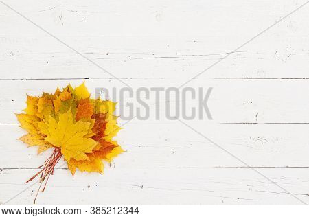 Bouquet Of Maple Leaves Of Different Colors On A White Wooden Table Background. Top View On Colorful
