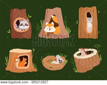 Animals Hollow. Wood Forest Trees With Holes For Wild Animals Houses Vector Cartoon Collection. Wild