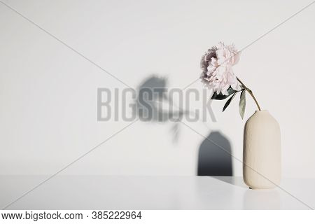 Vase With Beautiful Peony Flower Against White Wall
