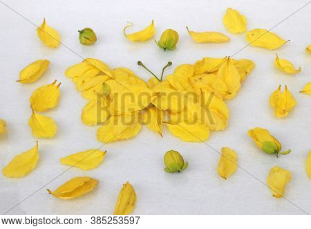 Yellow Petal Of Golden Shower Flower Set To Butterfly Shape And Corolla Flower Put Around On The Whi