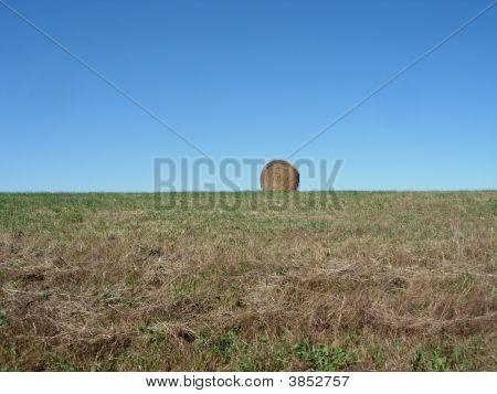 Round Hay Bail