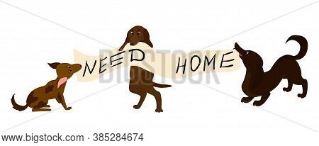 Adopt Homeless Dog Illustration . Help Homeless Animals Concept, Sad Puppies With Text Banner Need H