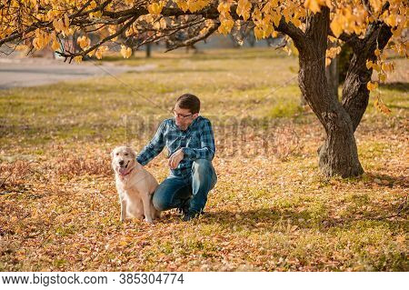 Bearded Man Playing With Big Golden Retriever Dog On Sunset. Dog Expresses Emotions To His Owner On