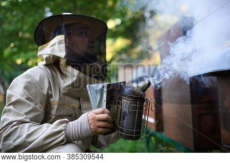 Portrait Of Man Beekeeper Working In Apiary, Using Bee Smoker.