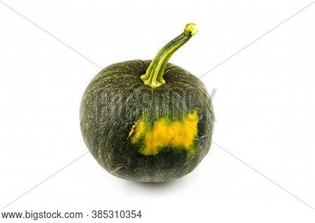 Green Pumpkin With Yellow Tinge Isolated On White Background. Harvest Concept.