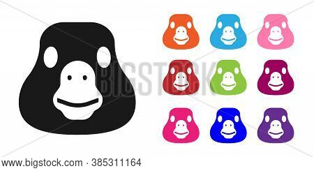 Black Goose Bird Icon Isolated On White Background. Animal Symbol. Set Icons Colorful. Vector