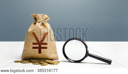 Yen Yuan Money Bag And Magnifying Glass. Financial Audit And Monitoring Of Suspicious Capital And Tr