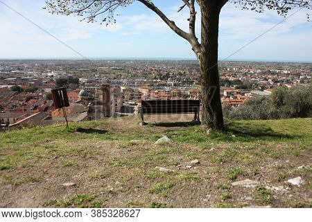 Aerial View From A Hill. A Quiet, Green, Quiet And Peaceful Public Park. A Solitary Bench, A Tree An
