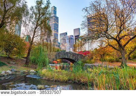 New York City from Central Park at twilight during autumn season.