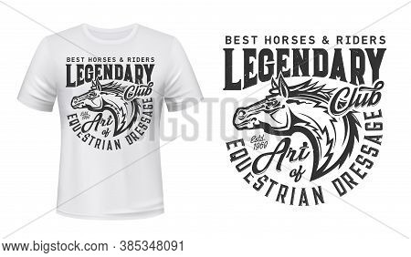 Equestrian, Horseback Riding Club T-shirt Vector Print. Horse Stallion Head With Mane Side View, Eng