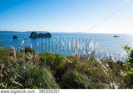 Coastal Outlook From Car Park For Cathedral Cove Walk At Hahei Coromandel New Zealand With Pampas Gr