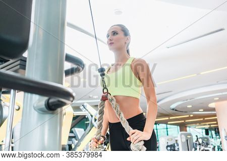 Low-angle view of a beautiful fit woman with a serious facial expression exercising cable rope triceps extension during arms workout routine at the gym