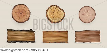 Realistic Wood Set Collection. Illustration Of Realism Style Drawn Wooden Cutting Stumps And Texture