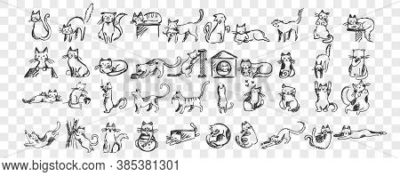 Cats Doodle Set. Collection Of Hand Drawn Pencil Sketches Templates Patterns Of Adorable Pets Kitten